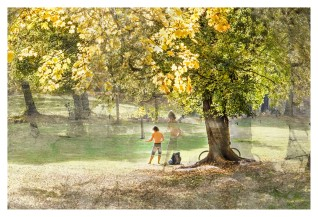 Leipzig Park mit Mediation