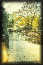 Foto im Park - Magdeburg