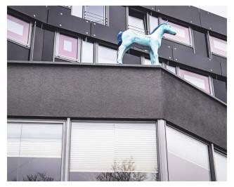 Pferd auf dem Dach