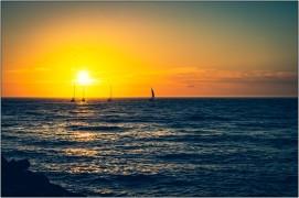 Der Sonne entgegen.....
