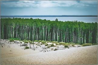 Wanderdüne Leba mit Süßwassersee