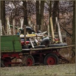 ---MG_5007 (Groß)