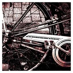 Fahrrad im Wolfshof
