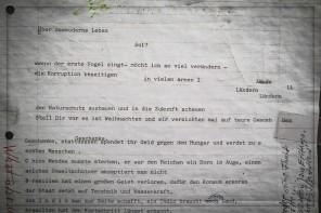 Ein Bürger klebt solche Zettel in Northeim an Schaufenster
