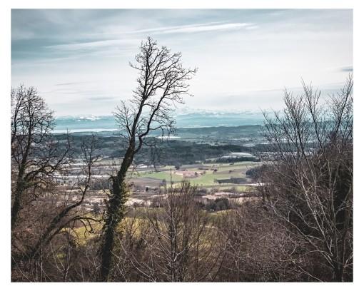 Ausblick vom Heiligenberg