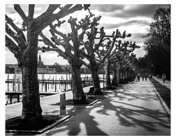 Konstanz Promenade