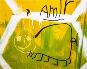 Das ist AMIR
