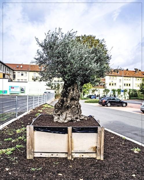 Kassel; Hafenstr. - Parkplatz vor Lidl