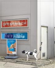 Hund - Essotanke; Ysenburgstr.