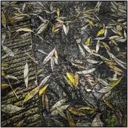 Blätter mit Textur