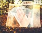 Nahe beim Dreifaltigkeitsfriedhof / Linke Hand des Fotografen