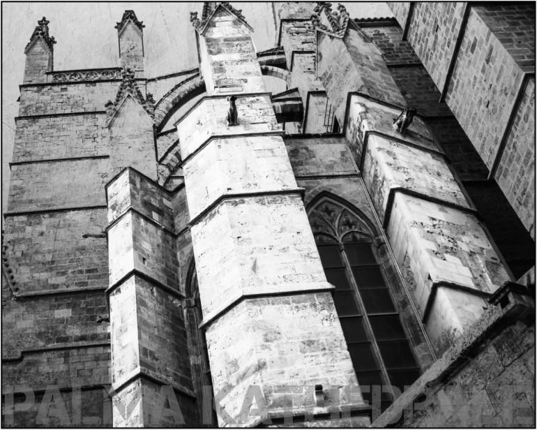 Kathedrale  - ein Blick nach oben