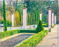 Säulen im Palmengarten