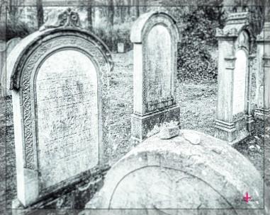 Jüdischer Friedhof Bad Pyrmont
